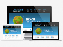 Carter Int Web Design
