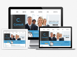 Consult Website Design