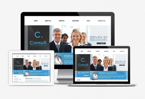 Consult Website Design